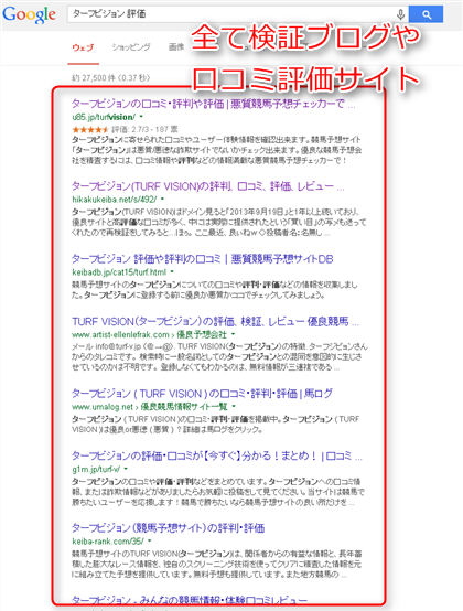 「ターフビジョン 評価」の検索結果